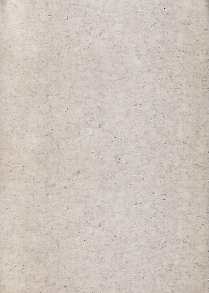 CK3-209w-WC-(скан)